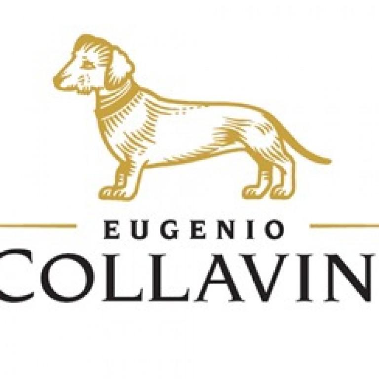 collavini-logo