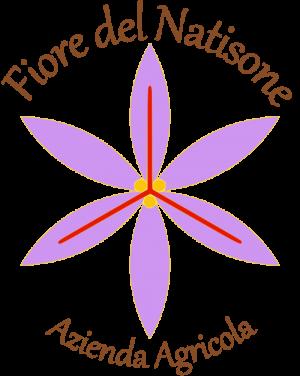 Logo Fiore del Natisone trasp 500x627