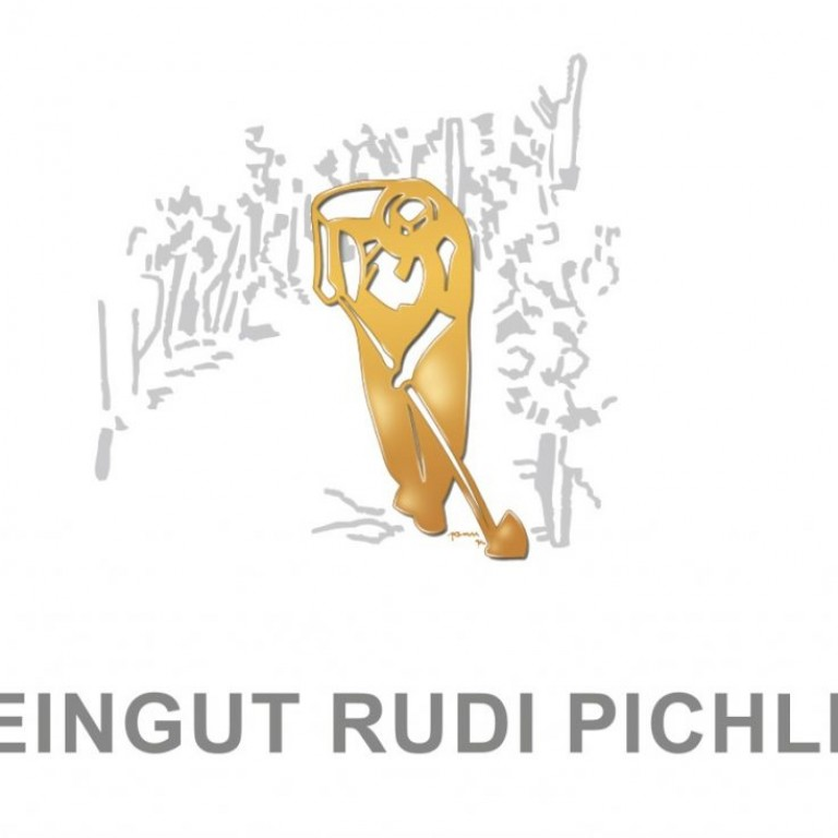 RPichler_Visitenkarten2016_1c+GOLD.indd